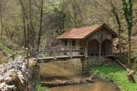 Ceremošnja most